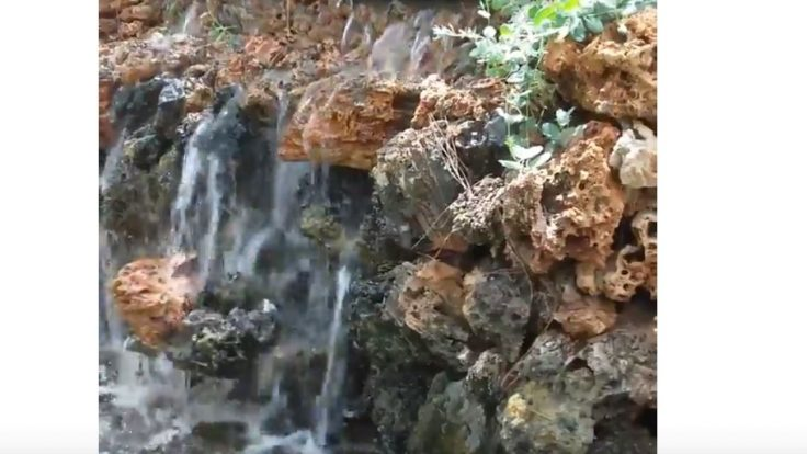Sihirli Peyzaj Video 24