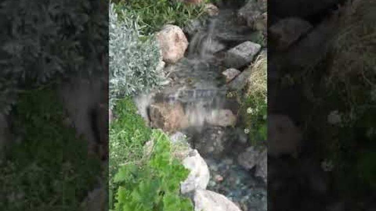 Sihirli Peyzaj Video 7
